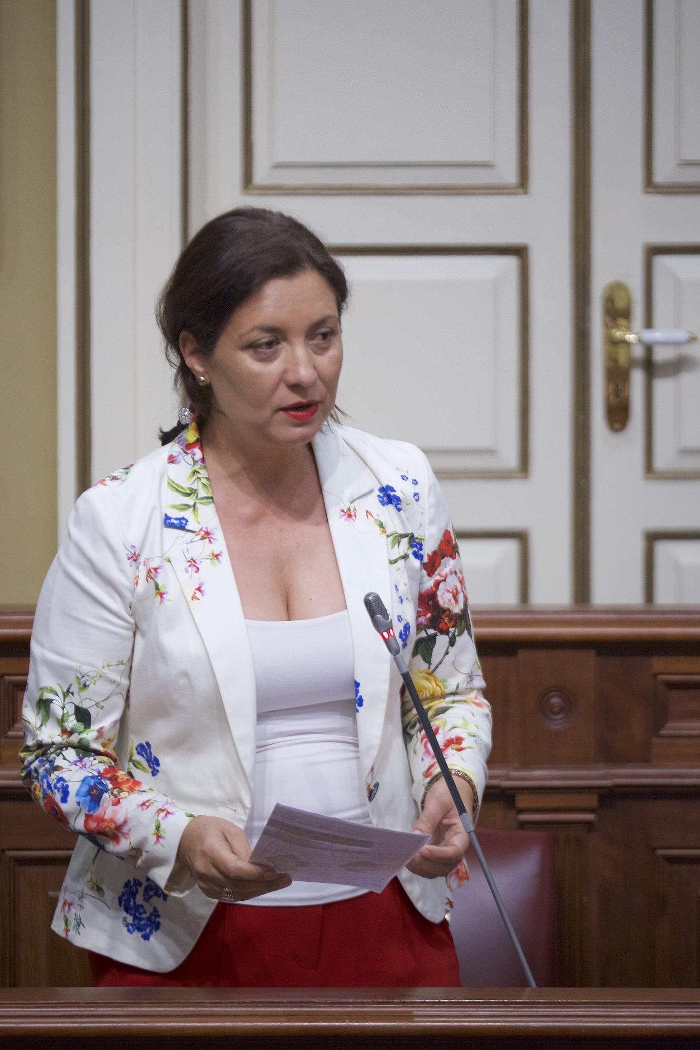 Resultado de imagen de La diputada Ventura del Carmen Rodríguez