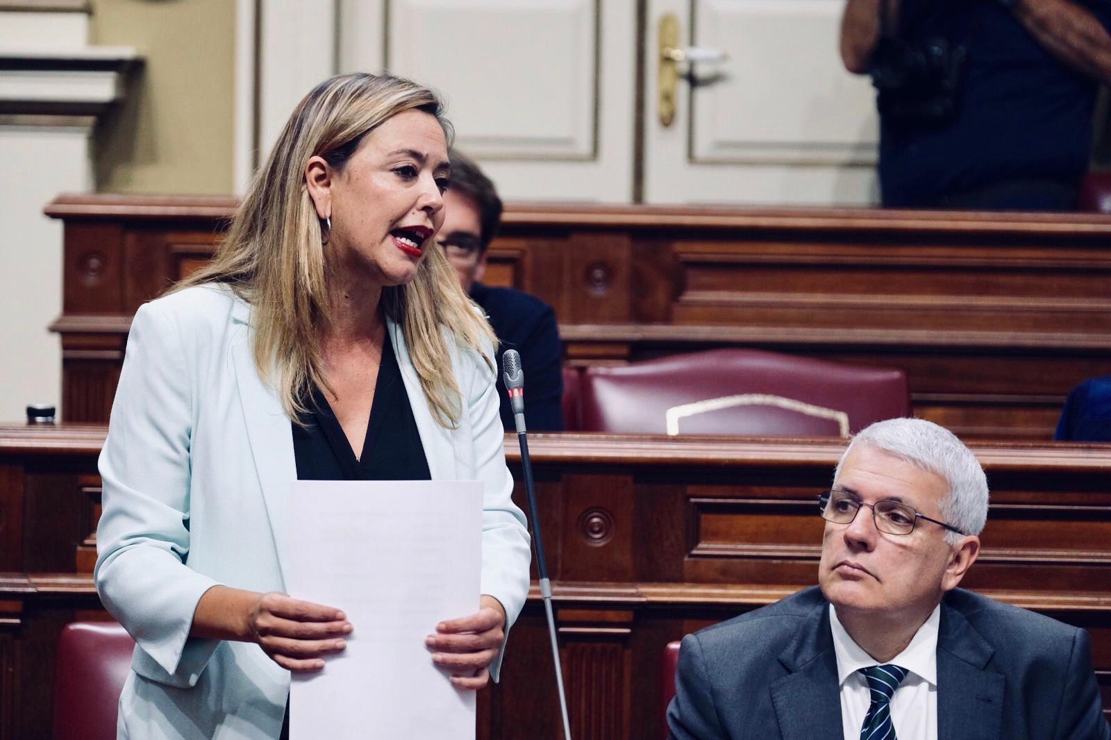 El PSOE pide al Gobierno explicaciones en este pleno sobre su cuestionable actuación en torno al caso Grúas